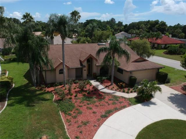 4312 Pro Am Avenue E, Bradenton, FL 34203 (MLS #A4182151) :: Medway Realty