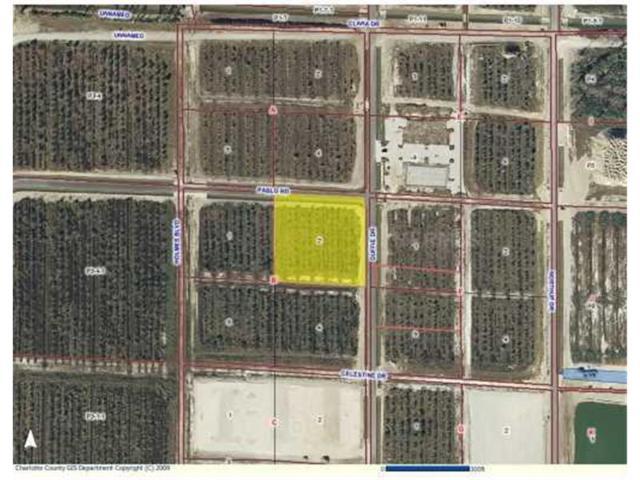 28521 Pablo Road RD, Punta Gorda, FL 33982 (MLS #C7003263) :: Griffin Group