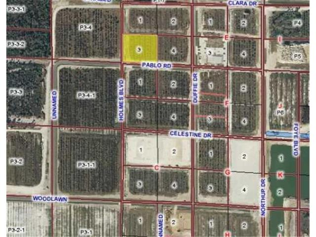 28510 Pablo Road RD, Punta Gorda, FL 33982 (MLS #C7005039) :: Griffin Group