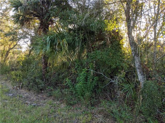 3105 Calexico Street, Port Charlotte, FL 33948 (MLS #C7043376) :: Rabell Realty Group