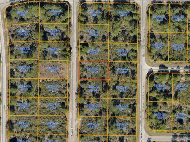 Alva Street, North Port, FL 34291 (MLS #D5794166) :: Medway Realty
