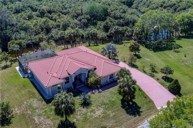 2401 Sahara Lane, North Port, FL 34286 (MLS #D5923475) :: Griffin Group