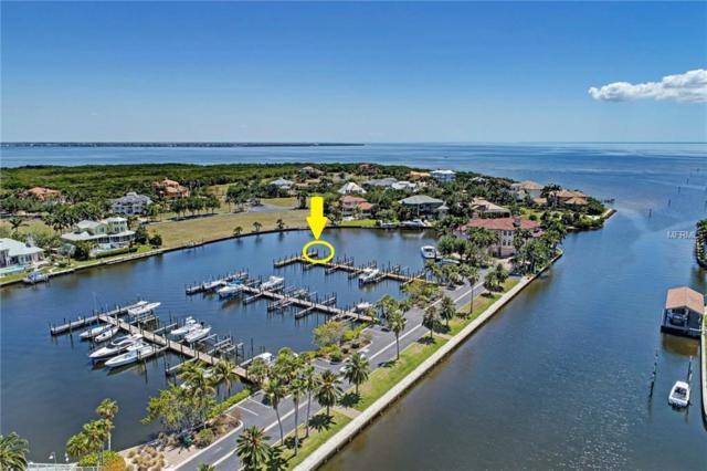 21450 Harborside Boulevard, Port Charlotte, FL 33952 (MLS #D6100166) :: Griffin Group