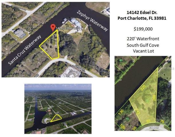 14142 Edsel Drive, Port Charlotte, FL 33981 (MLS #D6102818) :: The Lockhart Team