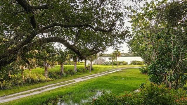 1810 Caulfield Drive, Englewood, FL 34223 (MLS #D6119410) :: The BRC Group, LLC