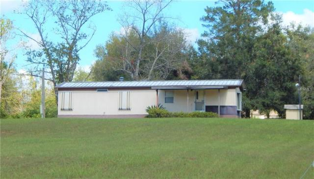 19027 N Adirondack Terrace N, Dade City, FL 33523 (MLS #E2203834) :: The Duncan Duo Team