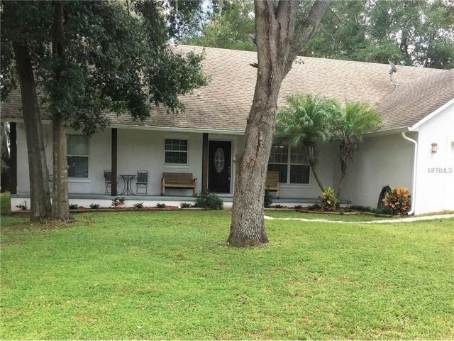 18118 Church Street, Groveland, FL 34736 (MLS #G4836433) :: Griffin Group