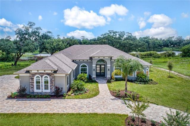 424 Two Lakes Lane, Eustis, FL 32726 (MLS #G4850924) :: Griffin Group