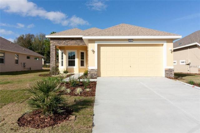 8097 Bridgeport Bay Circle, Mount Dora, FL 32757 (MLS #G5002615) :: Griffin Group