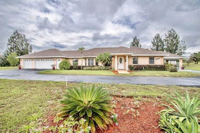 10535 Cherry Lake Road, Clermont, FL 34715 (MLS #G5041115) :: Stellar Home Sales