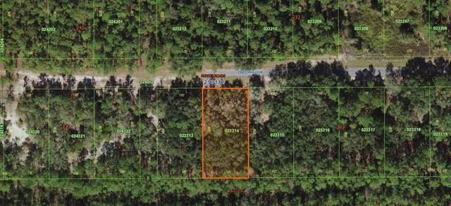 917 Plumosa Drive, Indian Lake Estates, FL 33855 (MLS #O5386768) :: Everlane Realty