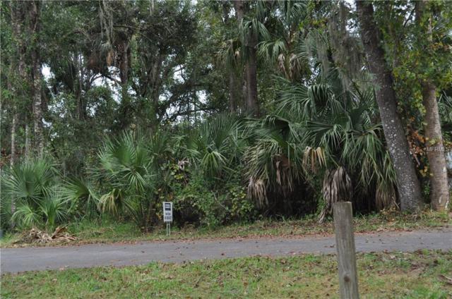 2741 Blue Heron Village, Deland, FL 32720 (MLS #O5716159) :: The Duncan Duo Team