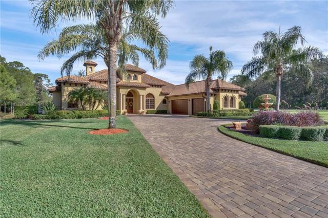 1727 Brackenhurst Place, Lake Mary, FL 32746 (MLS #O5749917) :: Premium Properties Real Estate Services