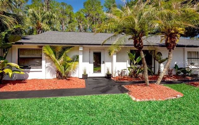 5024 Stanza Lane, Wesley Chapel, FL 33543 (MLS #O5763704) :: Visionary Properties Inc