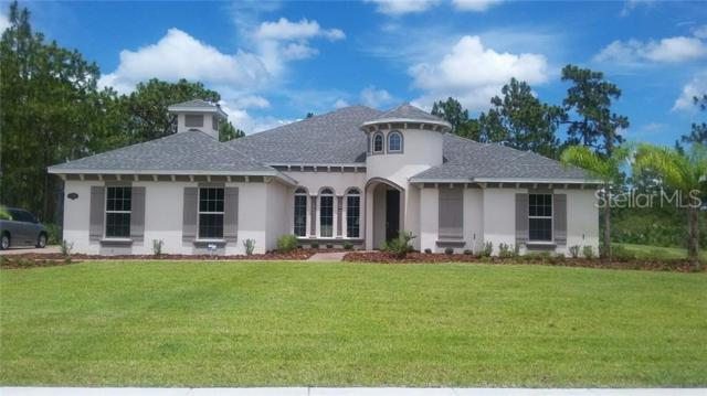 14309 Bella Lane, Orlando, FL 32832 (MLS #O5766637) :: The Duncan Duo Team