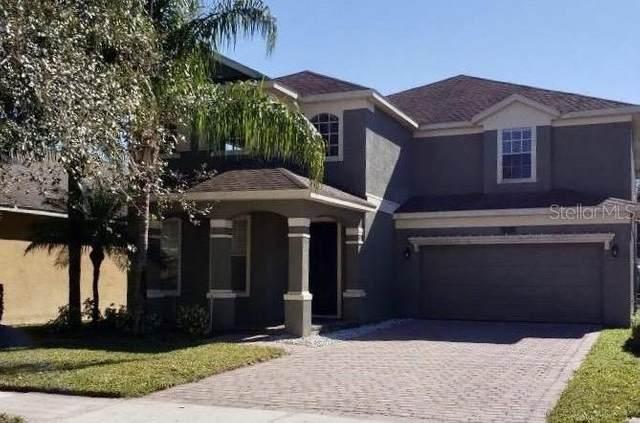 14338 Red Cardinal Court, Windermere, FL 34786 (MLS #O5838004) :: Bustamante Real Estate
