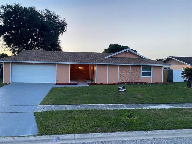 7217 Jonquil Drive, Orlando, FL 32818 (MLS #O5945149) :: Zarghami Group