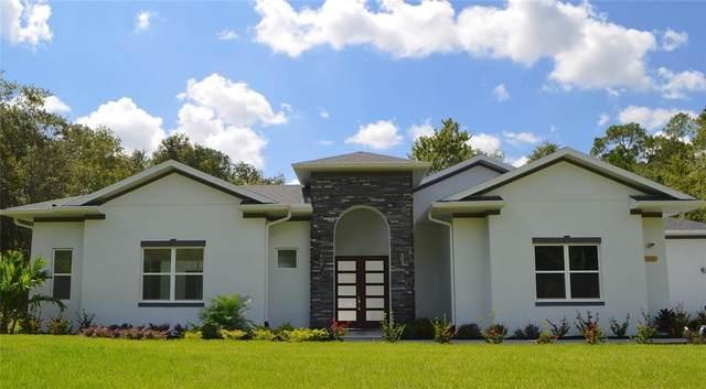 8496 Fox Trail, Kissimmee, FL 34747 (MLS #O5968554) :: Zarghami Group