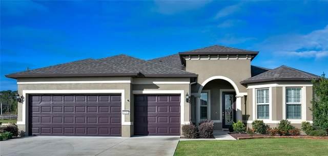 9781 SW 63RD Loop, Ocala, FL 34481 (MLS #OM611927) :: Bustamante Real Estate