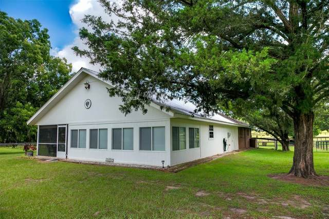 13557 NW Gainesville Road, Reddick, FL 32686 (MLS #OM624582) :: Cartwright Realty