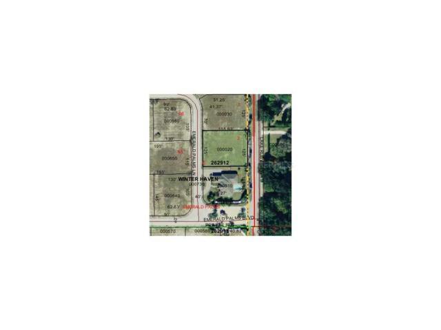 Emerald Palms Ln, Winter Haven, FL 33884 (MLS #P4623155) :: Godwin Realty Group