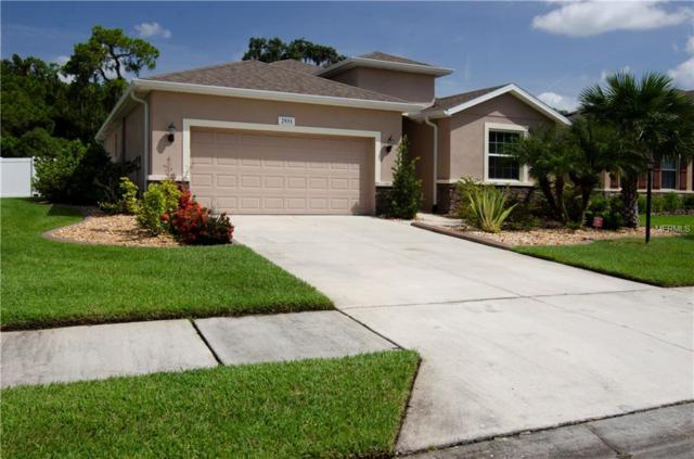 2931 130TH Avenue E, Parrish, FL 34219 (MLS #P4719822) :: Medway Realty