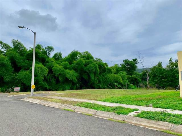 Urb. Hacienda Mariani, YAUCO, PR 00698 (MLS #PR9088701) :: Griffin Group