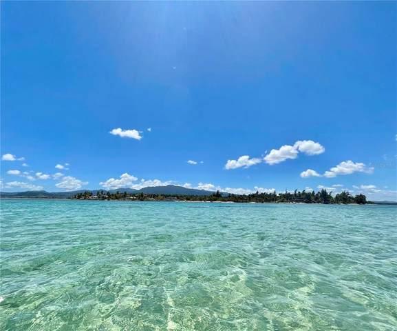 968 Camino Las Picuas 26-30, RIO GRANDE, PR 00745 (MLS #PR9092896) :: Premium Properties Real Estate Services