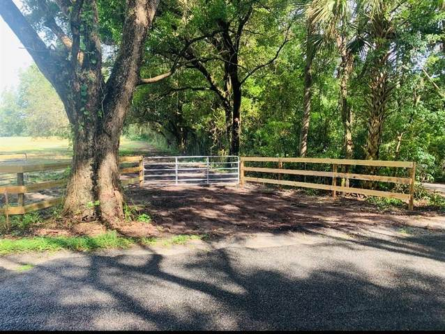 16201 SE 150TH Avenue, Weirsdale, FL 32195 (MLS #R4905200) :: The Paxton Group