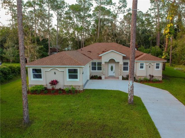 14324 Roxane Drive, Orlando, FL 32832 (MLS #S5004589) :: RE/MAX Realtec Group
