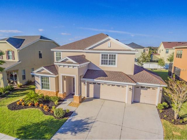 32551 Summerglade Drive, Wesley Chapel, FL 33545 (MLS #T2847977) :: The Duncan Duo & Associates