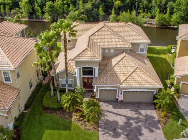 10546 Martinique Isle Drive, Tampa, FL 33647 (MLS #T2873005) :: The Duncan Duo Team