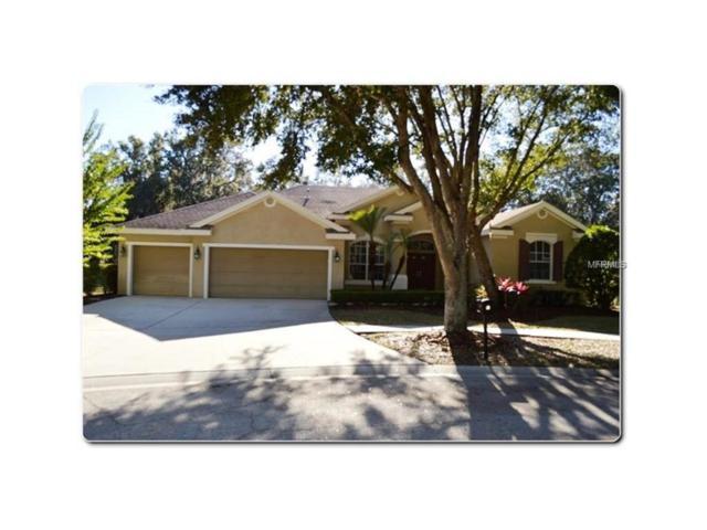 15203 Merlinpark Place, Lithia, FL 33547 (MLS #T2883907) :: The Duncan Duo & Associates