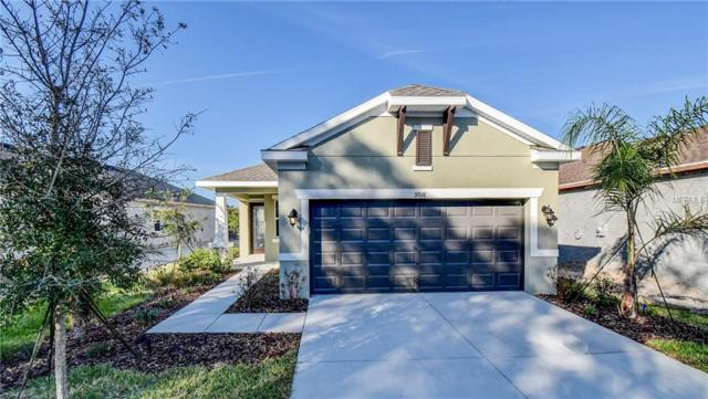 9916 Sheltering Spruce Street, Englewood, FL 34223 (MLS #T2918271) :: Medway Realty