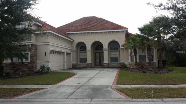 8309 Windsor Bluff Drive, Tampa, FL 33647 (MLS #T2919040) :: Team Bohannon Keller Williams, Tampa Properties