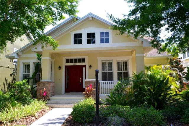 14614 Canopy Drive, Tampa, FL 33626 (MLS #T2929552) :: The Duncan Duo Team