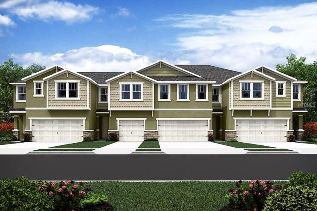 17816 Althea Blue Place #7, Lutz, FL 33558 (MLS #T3105573) :: The Duncan Duo Team