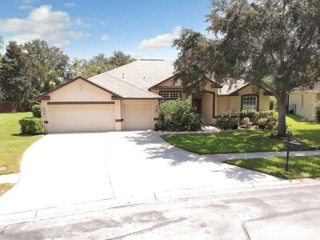 22909 Collridge Drive, Land O Lakes, FL 34639 (MLS #T3106915) :: The Light Team