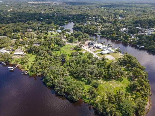 8353 Alafia Pointe Drive, Riverview, FL 33578 (MLS #T3110215) :: Everlane Realty