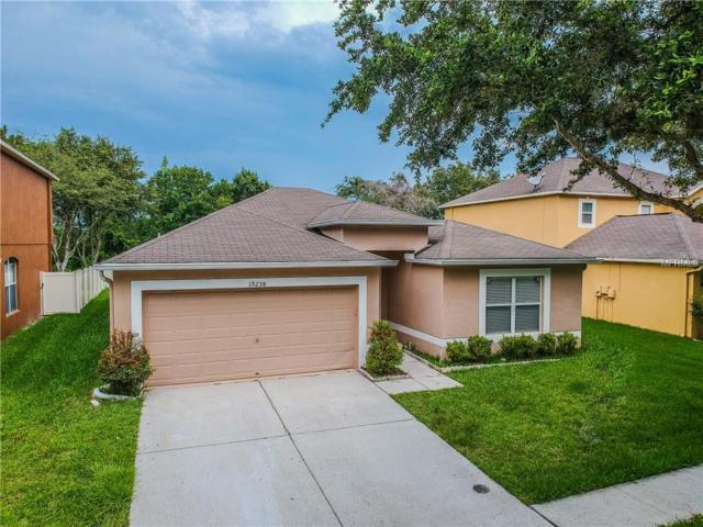 19258 Wood Sage Drive, Tampa, FL 33647 (MLS #T3114712) :: Team Bohannon Keller Williams, Tampa Properties