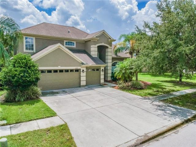 18809 Chopin Drive, Lutz, FL 33558 (MLS #T3129257) :: Team Bohannon Keller Williams, Tampa Properties
