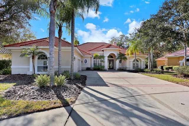 16336 Heathrow Drive, Tampa, FL 33647 (MLS #T3129457) :: Remax Alliance