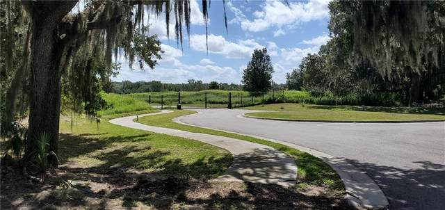 15307 Fishhawk Heights Run, Lithia, FL 33547 (MLS #T3151029) :: The Kardosh Team