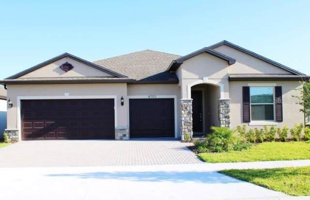 18703 Birchwood Groves Drive, Lutz, FL 33558 (MLS #T3155815) :: Ideal Florida Real Estate