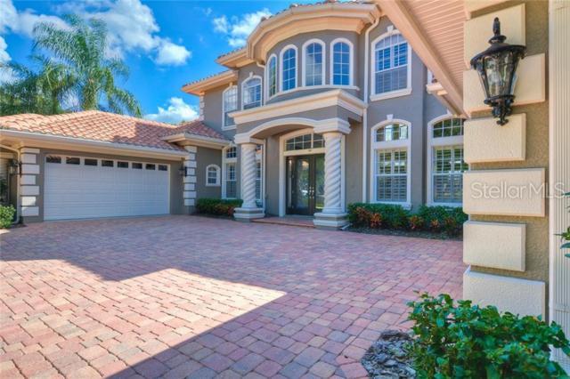 10534 Pontofino Circle, Trinity, FL 34655 (MLS #T3164210) :: Griffin Group