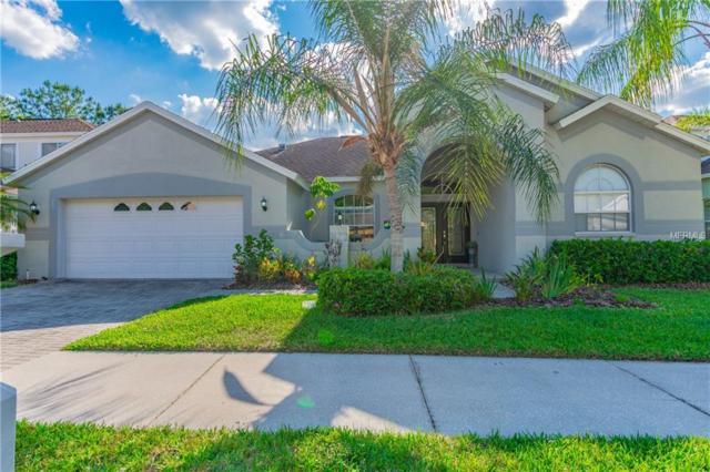 10518 Canary Isle Drive, Tampa, FL 33647 (MLS #T3166555) :: Team Bohannon Keller Williams, Tampa Properties
