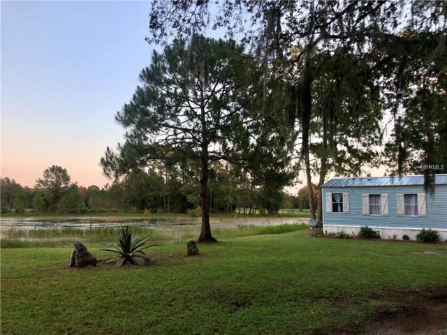 2975 Cr 321, Bushnell, FL 33513 (MLS #T3176619) :: Remax Alliance