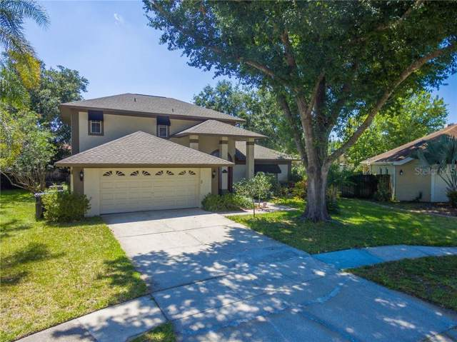 14106 Stonebrook Court, Tampa, FL 33624 (MLS #T3177790) :: The Duncan Duo Team
