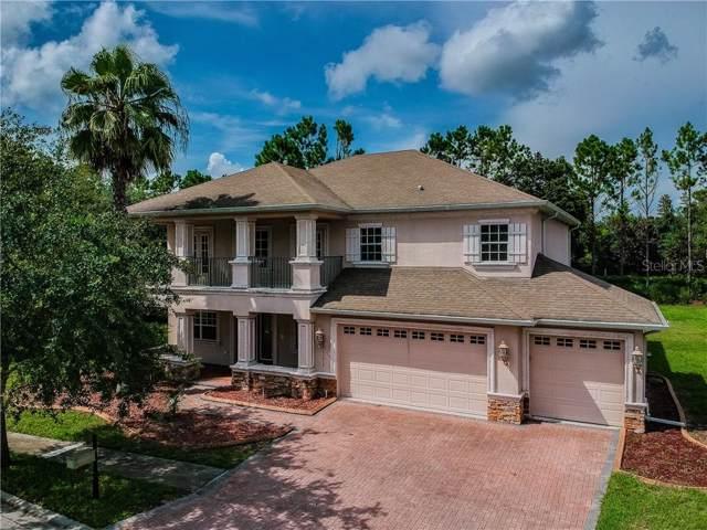 21413 Draycott Way, Land O Lakes, FL 34637 (MLS #T3179655) :: Lovitch Realty Group, LLC