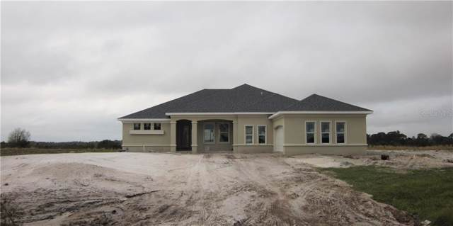 5210 Lake Venice Drive, Wimauma, FL 33598 (MLS #T3193294) :: Armel Real Estate